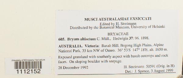 Bryum altisetum image
