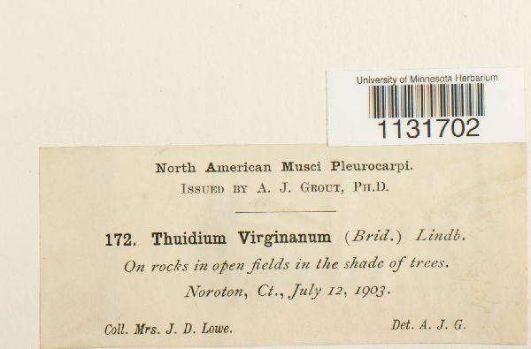 Bryohaplocladium virginianum image