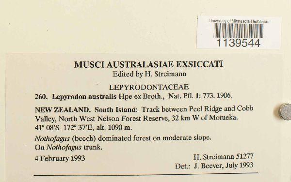 Lepyrodon australis image