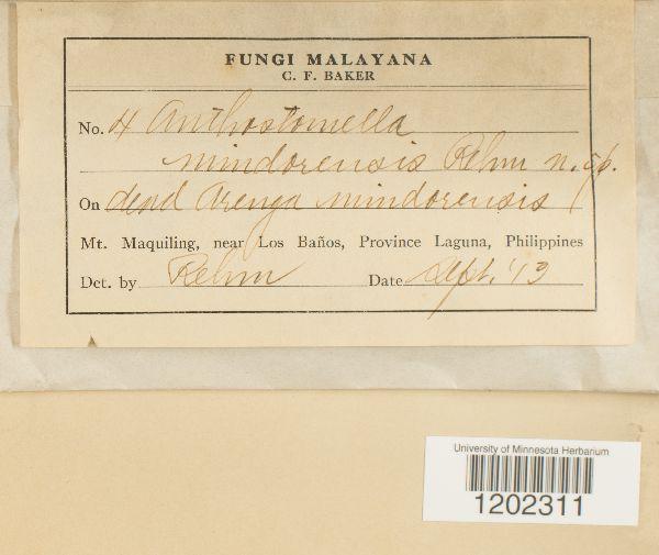 Anthostomella mindorensis image