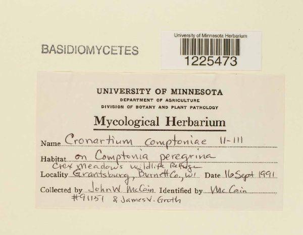 Cronartium image