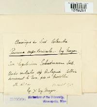 Image of Puccinia eupatoriicola