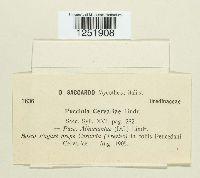 Image of Puccinia cervariae