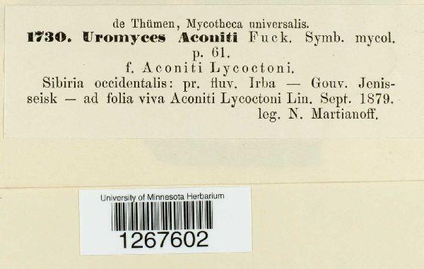 Uromyces aconiti image