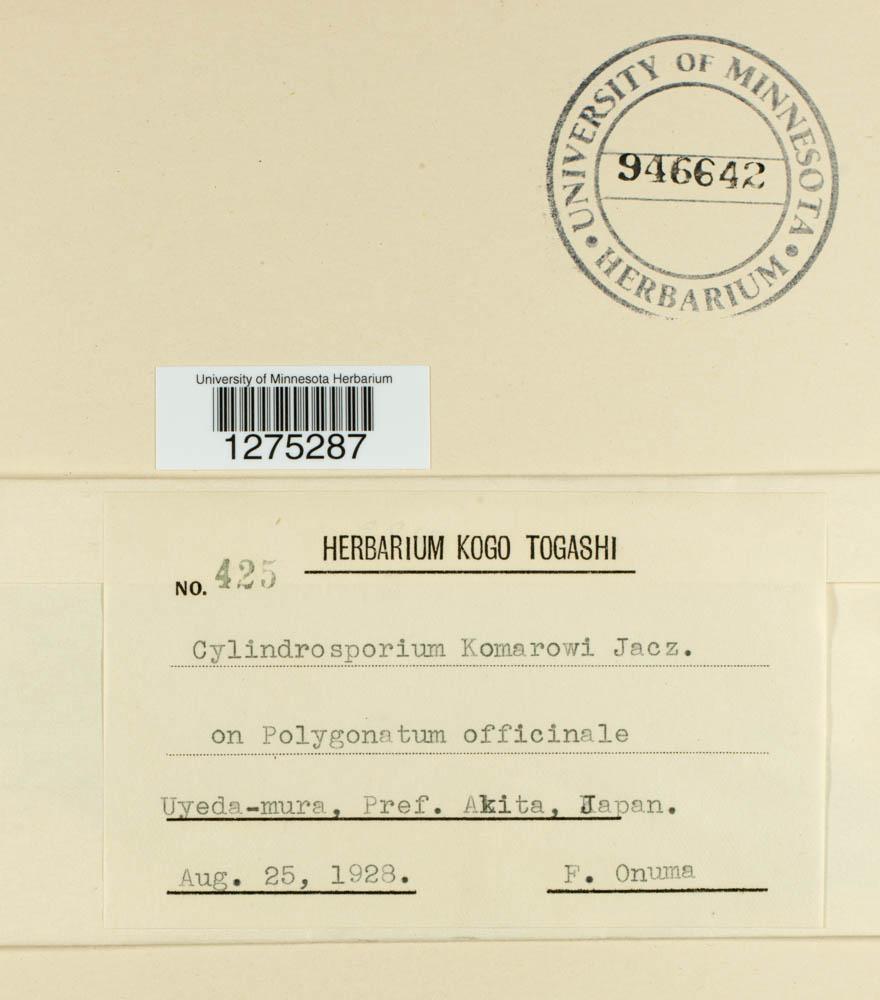 Cylindrosporium komarowii image