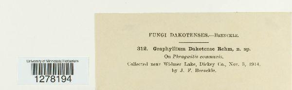 Graphyllium image
