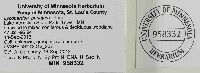 Lycoperdon perlatum image